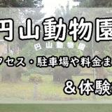 円山動物園のアイキャッチ画像