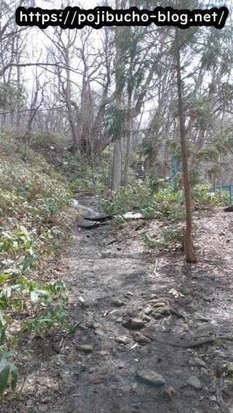 suage3へ向かう登山道の画像